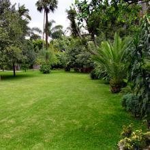 AGAO0208 Instalación y Mantenimiento de Jardines y Zonas Verdes